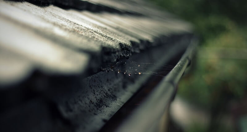 Guttering with a cobweb in