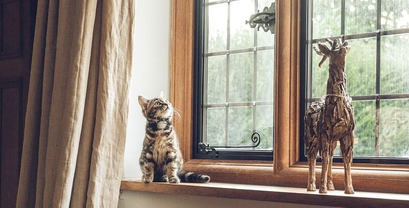 Period house windows